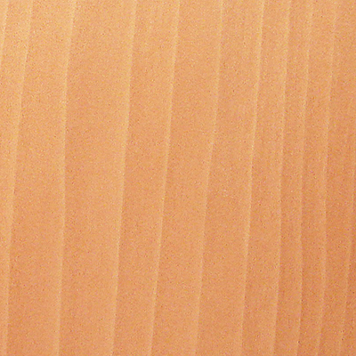 sap gum-wood